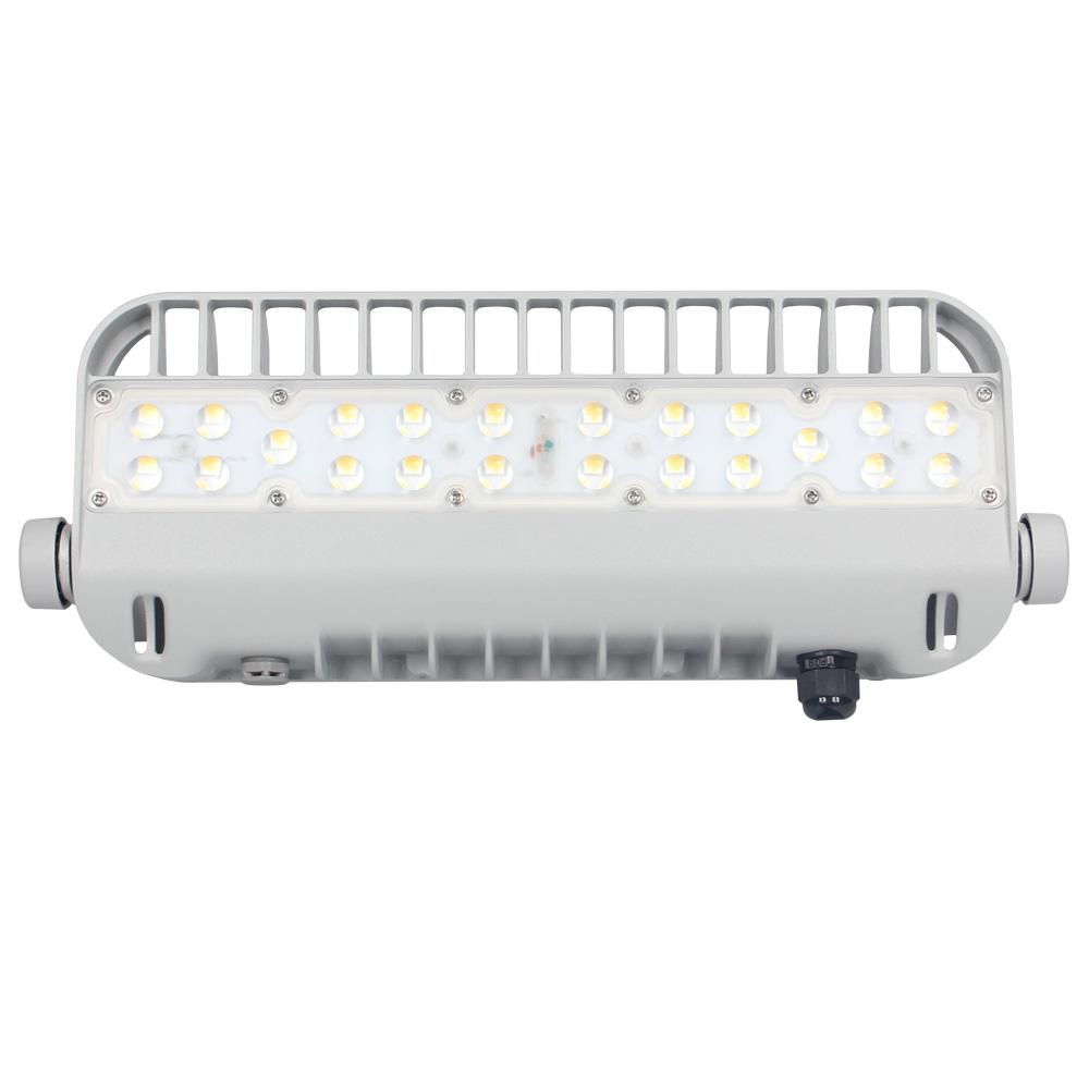 Wholesale Led Reflektor Factory - 50W LED Flood light – Lowcled
